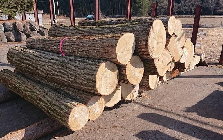 木木木林-広葉樹活用プロジェクト