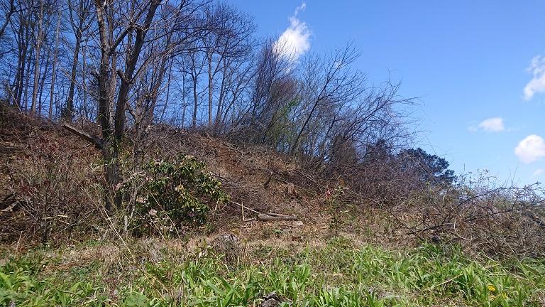 2021年4月作業-木木木林